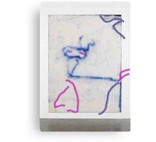 caballo Canvas Print