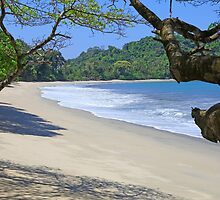 Playa Cuatro Manuel Antonio National Park, Costa Rica by John Keates