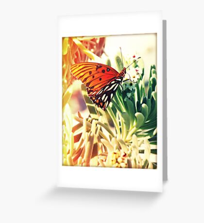 Beach Butterfly Greeting Card