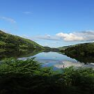Loch Eilt, Scotland by Marilyn Harris