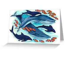 Blue Whales and Friends Greeting Card