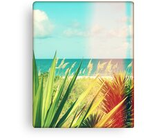 Captiva Island I Canvas Print