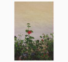Geraniums (Pelargonium) #11 One Piece - Short Sleeve