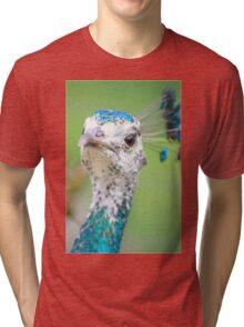 Pretty Peahen Tri-blend T-Shirt