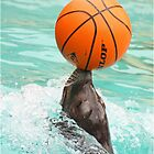 The Sea-Lion Show by Mounty