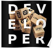 developer coder programming lenguage Poster