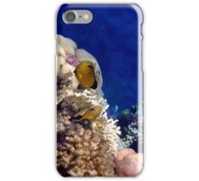 Exquisite Butterflyfish in the Red Sea iPhone Case/Skin