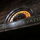 Hollywood Tower Hotel- Service Elevator by Margybear