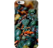 Turquoise Jelly Baby Fungus With Fuzz iPhone Case/Skin
