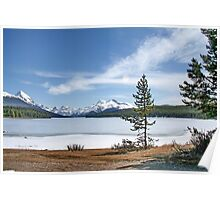 Maligne Lake nr. Jasper Canada Poster