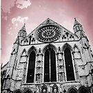 York Minster by Mounty