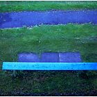 The Blue Bench by Wayne King