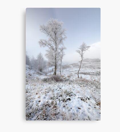Glen Shiel Misty Winter Trees Metal Print