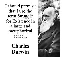 I Should Premise - Charles Darwin Photographic Print