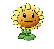Plants vs Zombies 2 - Sunflower Photographic Print