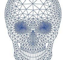 Skull with mesh pattern by beakraus