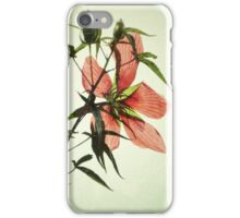 On A Chinese Screen iPhone Case/Skin