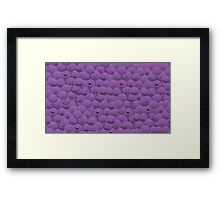member berries Framed Print