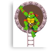 Raph hanging out Canvas Print