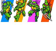 TMNT Turtles in Time Characters by Funkymunkey