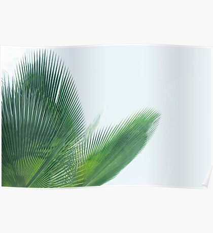 Green tropical beauty Poster