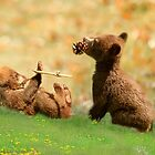 Cubs at Play by littlecritters
