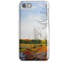 Autumn Swamp iPhone Case/Skin