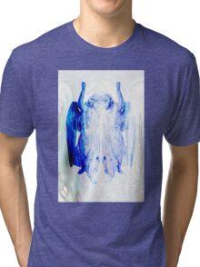Angel 17 Tri-blend T-Shirt