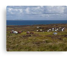 Digging for Peat Canvas Print