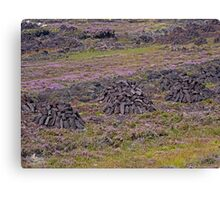 Heather and Peat Canvas Print