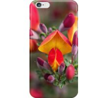 Pretty Orange and Yellow Flowers iPhone Case/Skin
