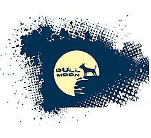 Bull Moon Photographic Print