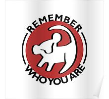 Remember Who You Are Poster