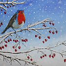 Robin In The Snow by AnnaBaria
