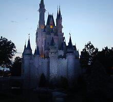 Cinderella Castle by schermer