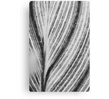 B&W Stripe Canvas Print