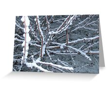 Frost on Branches Greeting Card