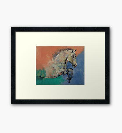 Graceful Jets Framed Print