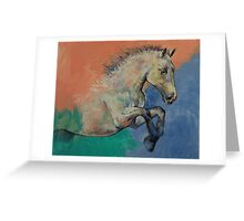 Graceful Jets Greeting Card