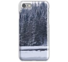 Frozen Lake iPhone Case/Skin