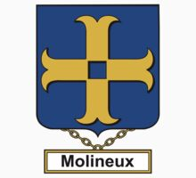 Molineux Coat of Arms (English) Kids Clothes