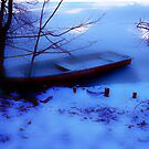 The frozen Lake near my Home by Imi Koetz