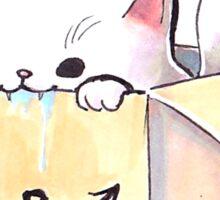 White cat in a box Sticker