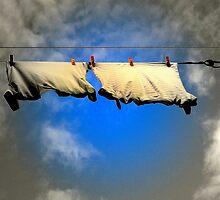 Blowin In The Wind ! by Elfriede Fulda