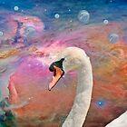 Dreams of a Swan by KathleenRinker