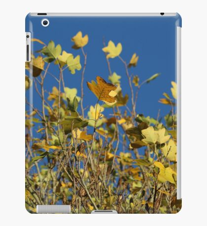 Yellow Leaves & Blue Sky iPad Case/Skin