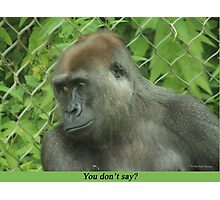 You don't say? Photographic Print