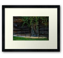 Little Door Framed Print