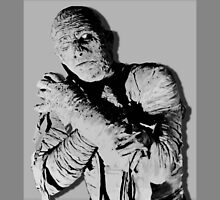 The Mummy - Lon Chaney Fan Tribute by katastrophy