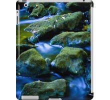 Moss Creek  iPad Case/Skin